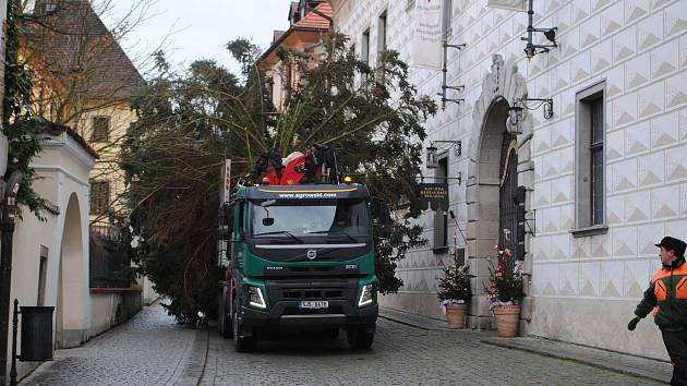 Vánoční stříbrný smrk dorazil v pondělí dopoledne na krumlovské náměstí. Při usazování ale praskl, a tak městské lesy musejí pokácet jiný.