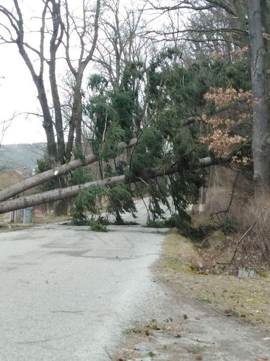 Stromy uzavřely silnici také mezi Vyšným a vlakovým nádražím Český Krumlov.
