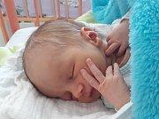 Zbyšek Havel se v českokrumlovské porodnici narodil mamince Daniele Zahálkové a tatínku Zbyšku Havlovi 19. března 2019 v 15.09. Při příchodu na svět měl přesně 50 centimetrů a vážil 2 880 gramů. Vyrůstat bude v Kuří na Benešovsku.