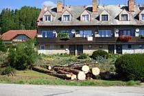 Stromy ustoupily požadavkům některých lidí.