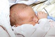 Sebastien Šestauber je prvním společným miminkem Evy a Tomáše Šestauberových zČ. Budějovic. Chlapeček bude mítrodném listě datum 1. července 2015. Ten den ve 22:11 totiž smírami 52 cm a 3655 g vykoukl na svět. Vyrůstat bude společně se Samuelem (6).