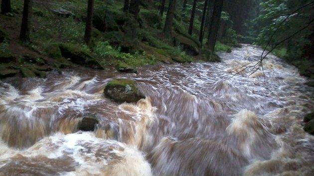 Vydatné deště zvýšily hladiny toků v jižních Čechách