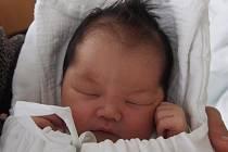 V Benešově nad Černou bude první zkušenosti sbírat Tran Minh Khang. Chlapeček se narodil 5. května 2019 v pět hodin odpoledne rodičům Hoang Thi Thuy a Tran Van Diep. Vyrůstat bude se svým sedmiletým bráškou.