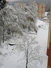 Zasněžený  pátek v Loučovicích.