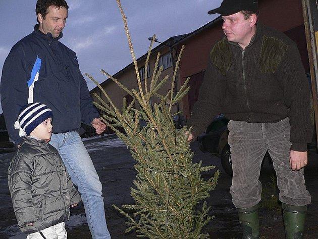 Prodej vánočních stromků zahájili letos jako první Frymburští.