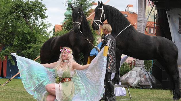 Drezúra fríských koní na Slavnostech pětilisté růže.