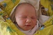 Porodní vahou 3340 gramů se po narození mohla pochlubit holčička jménem Adéla Pelechová. Pro svůj příchod na svět se rozhodla vúterý 6. října 2015 ve 14 hodin a 56 minut. Adélka je novou obyvatelkou Holubova.