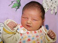 Dvouapůlletá Eliška se už moc těšila na narození Anežky Iserové, holčičky s mírami 50 centimetrů a 4070 gramů. Druhý potomek Evy a Aleše Iserových ze Srnína vykoukl na svět dne 29. srpna 2012 v 00.53 hodin. Tatínek u porodu asistoval.