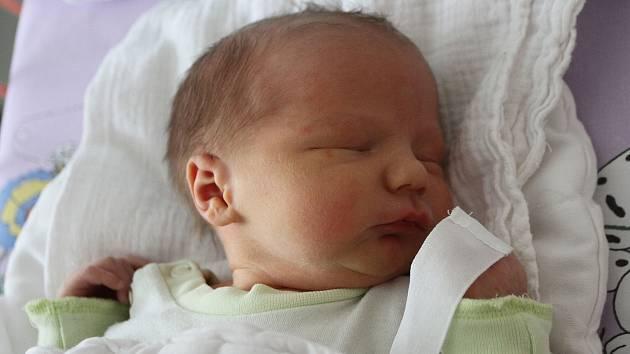 Nikola Plhalová a Jiří Sixl z Brloha přivedli 19. února 2019 v 12:46 společnými silami na svět svého prvního potomka. Novorozený Jan Sixl se mohl pyšnit mírami 50 centimetrů a 3 500 gramů.