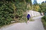 Ve Fialkové ulici v ck vítr zlomil větev.