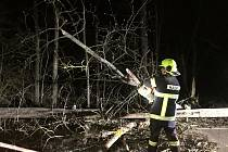 Jednotka SDH obce Velešín odklízela po půlnoci stromy za Římovem.