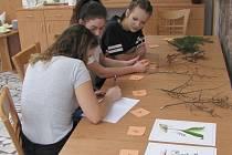 Děti a studenti ze Šumavy otestují v úterý znalosti o přírodě v soutěži YPEF 2018. Ilustrační foto.
