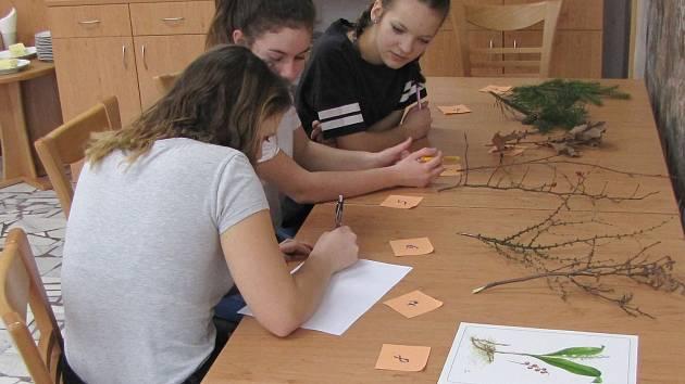 Děti a studenti ze Šumavy mohou otestovat své znalosti o přírodě v soutěži YPEF. Ilustrační foto.