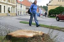 Dvě lípy poblíž kaplického hřbitova, které místní míjeli po několik desetiletí, musely padnout k zemi na základě odborného dendrologického posudku. Stačilo totiž, aby zafoukal silný vítr, a části stromů se mohly samovolně odlomit.