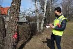 Pracovníci Metrostavu v pondělí u Velešína označovali  stromy určené ke kácení.