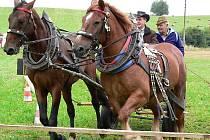 Dvojspřeží vedené Františkem Farkou právě projíždí překážkou zvanou účko, kdy musí  koně i s vozem ostře zatočit a přitom neshodit boční lišty kolem trasy.
