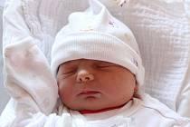 Amálka Sojková je dalším potomkem Lady a Pavla Sojkových. Na svět přišla ve čtvrtek 10. ledna 2019 v 19 hodin a 20 minut s mírami 49 centimetrů a 3 400 gramů. Doma ve Světlíku na ni čekal starší bráška, téměř tříletý Pavel. Tatínek u porodu asistoval.