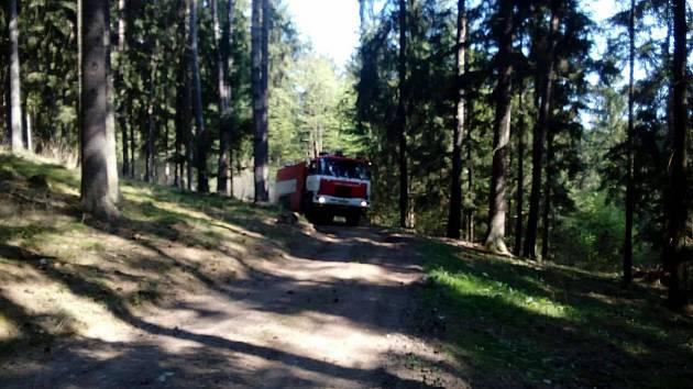 Mezi Kladenským Rovným a Přelšticemi hořel les.