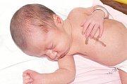 Laura Janotová se narodila v prachatické porodnici ve čtvrtek 7. července v8:45 hodin rodičům Lucii a Jiřímu Janotovým. Malá Laura, která měřila 51 centimetrů a vážila 3130 gramů, bude vyrůstat v Českém Krumlově.