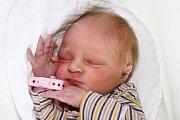 Třináctiletý Pavel a téměř jedenáctiletý Vojta se 4. července 2016 ve 14:01 dočkali malé sestřičky - Karolíny Šebestové. První společný potomek Jany Šebestové Štroblové a Karla Šebesty zKlení při narození měřil 47 cm a vážil 3010 g.