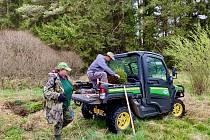 Dobrovolníci z jihu Čech o prvním májovém víkendu sázeli lesy u Frymburka.