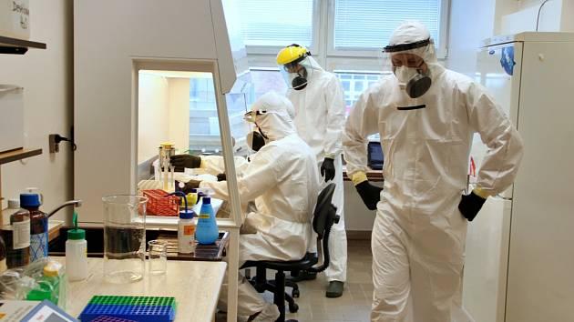 Českobudějovické Biologické centrum Akademie věd ČR má od května novou laboratoř na testování vzorků na covid-19.
