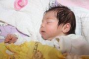 Prvorozená Irena Bikárová spatřila světlo světa vneděli 23. srpna 2015 v11:20, měřila 49 centimetrů a vážila přesně tři kilogramy. Holčička je prvorozeným potomkem Michaely Bikárové zVětřní.