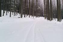 Všechny běžkařské trasy okolo Kletě jsou projeté.