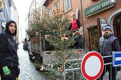 Pracovníci města v pátek rozváželi po městě ozdobené vánoční stromky.
