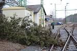 Ve Vyšším Brodě spadl kus stromu na koleje přímo na nádraží.