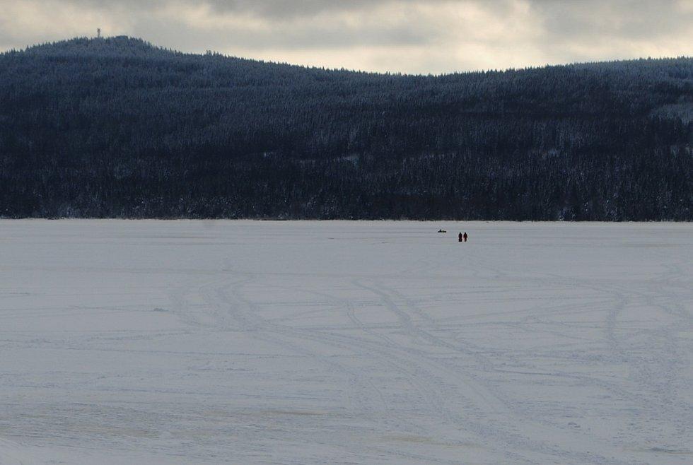Kobylku, která utekla z ohrady na Kovářově a propadla se uprostřed Lipna, téměř kilometr od břehu, do ledu, se podařilo zachránit.