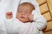 Šárka Koubová spatřila světlo světa 17. listopadu 2015 tři minuty před půl pátou ráno, měřila 51 centimetrů a vážila 3200 gramů. Českokrumlovští partneři Lubica Lopušná a Jan Kouba byli u porodu své prvorozené dcery společně.