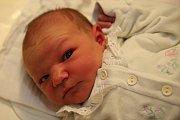 Nela Holubová z Kaplice se narodila ve čtvrtek 19. listopadu 2015 ve 20:08, měřila 50 cm a vážila 3530 g. Doma na druhého potomka Michaely Hrstkové a Romana Holuba čekala dvouapůlletá sestřička Nikolka.