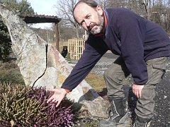 Zahradník Jiří Slovák ukazuje kvetoucí vřesovec, v němž v sobotu bzučelo plno včel.