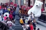 Obří lední medvěd se producíroval v Českém Krumlově.