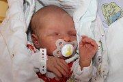 Roční bráška Adam čekal doma v Přídolí na novorozenou Emu Pavlisovou. Ta spatřila světlo světa ve středu 11. listopadu 2015 v 17:34, měřila 47 centimetrů a vážila 2925 gramů. Maminkou obou dětí je Alena Pavlisová.