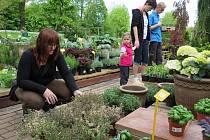 Můžete se například vydat na Bylinkový den do Zahradnictví Krumlov.