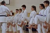 Krumlovský Shotokan Karate Klub mohl i díky podpoře kraje a města zorganizovat několik akcí pro mládež.