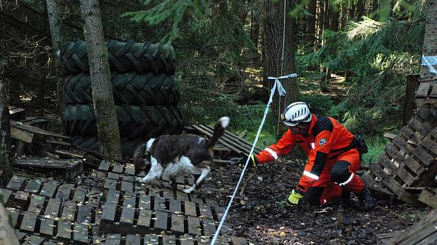 Záchranářští psi s psovody měli na Spáleništi mistrovství České republiky.