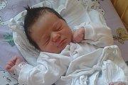 Kristýna Lisá se narodila ve středu 30.  prosince 2015 smírami 49 centimetrů a 3155 gramů. Holčička bude vyrůstat vHorní Plané.