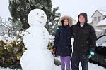 Pořádného sněhuláka postavila s pomocníky Lucie Šafářová na rozcestí v Dolním Třeboníně.
