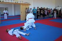 V krumlovském Skleníku sídlí Sportovní klub karate Český Krumlov .