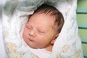 Prvorozená Julie Dvořáková se českokrumlovským partnerům Doře Kubíčkové a Josefu Dvořákovi narodila 19. srpna 2015 v18:57, měřila 51 centimetrů a vážila 3545 gramů. Novopečený otec nemohl u porodu chybět.