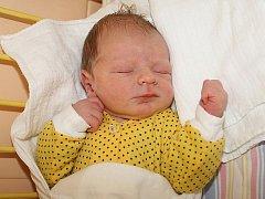 Českokrumlovští Monika a Josef Polívkovi jsou od 27. dubna 2011 šťastnými rodiči Josefa Polívky, který spatřil světlo světa v 16.44 hodin. Porodní míry jejich prvního miminka byly 53 centimetrů a 3925 gramů.