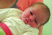 Emma Pal'unová z Č. Krumlova si nevybrala z pohledu tatínka nejlepší den na své narození, jelikož byl zrovna v práci. Emma se narodila 24. 5. ve 22:46, měřila 49 cm, vážila 3,80 kg. Holčička je prvním dítětem Barbory Laštovkové a Josefa Pal'una.