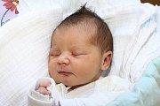 Prvorozená Alia Ben Hassine se narodila ve středu 22. června 2016 v17 hodin a 47 minut, měřila 50 centimetrů a vážila 2830 gramů. Holčičku přivedla na svět velešínská maminka Alena Dychtlová, jejím tatínkem je Ben Hassine.