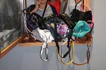 Kolektiv společnosti Oknotherm Kaplice s nasbíranými kabelkami.