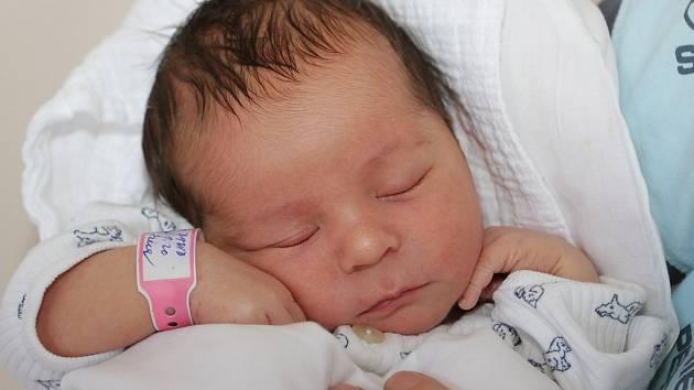 Jana a Stanislav Pokorných ze Zubčic přivedli ve středu 8. května 2013 v 1 hodinu a 20 minut společnými silami na svět jejich první společné miminko. Davídek Pokorný při narození měřil 50 centimetrů a vážil 3525 gramů.