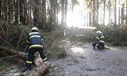 V plném nasazení byli při odstraňování padlých stromů také frymburští dobrovolní hasiči.