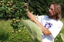Správný postup při takzvaném letním řezu jabloní ukazoval ve Velešíně zájemcům Stanislav Boček z Mendelovy zemědělské a lesnické univerzity v Brně.